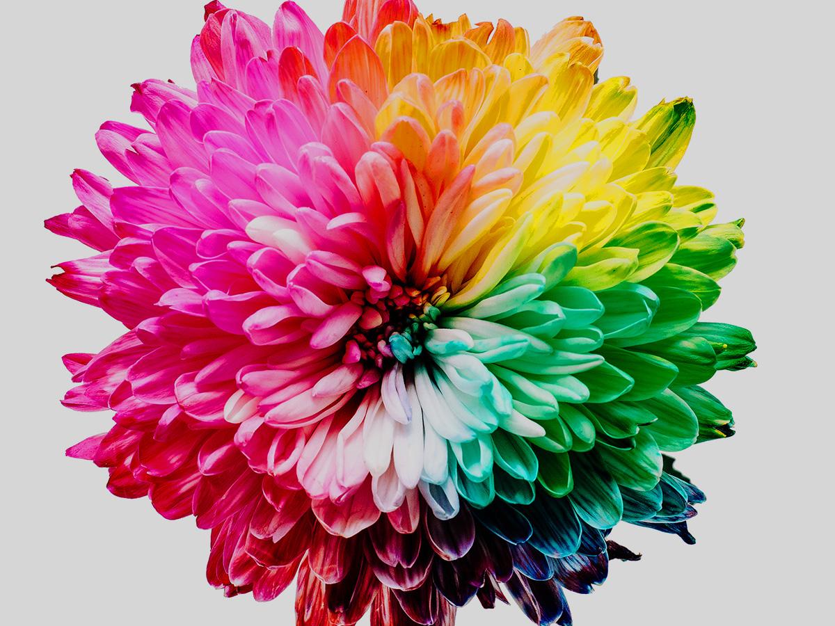 graffaf - RGB, CMYK, Lab - czyli jak działają tryby kolorów
